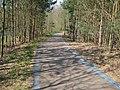 Fläming Skate Strecke S4 zwischen Stülpe und Lynow - panoramio.jpg