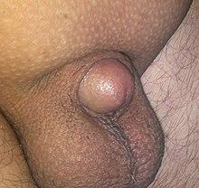 Wet pussys taking big cocks