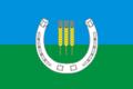 Flag of Spasskoe (Primorsky krai).png