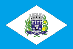 Flag of Suzanapolis - SP.png