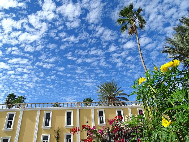 File:Flowers and Sky - San Jose del Cabo - Baja California Sur - Mexico - 01 (24055816311) (2).jpg
