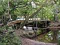 Footbridge and ford over the Lymington River, Roydon Manor, New Forest - geograph.org.uk - 62564.jpg