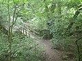 Footbridge in the woods - geograph.org.uk - 874869.jpg