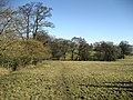 Footpath between Grindleton and Hill House - geograph.org.uk - 1736336.jpg