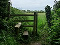 Footpath south of Blendworth - geograph.org.uk - 1317207.jpg