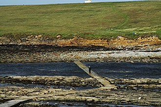 Brough of Birsay - Image: Footpath to the Brough of Birsay
