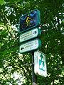 Forêt de la Robertsau-Orientation.jpg