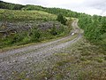 Forest track near Inverlair - geograph.org.uk - 20767.jpg