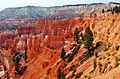 Forms and Colors, Bryce Canyon NP, UT9-09 (24459898394).jpg