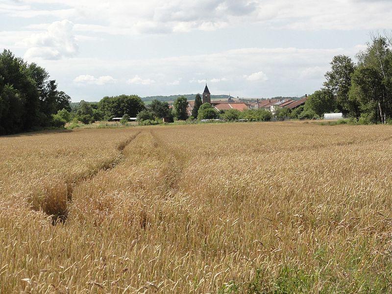 Fréménil (M-et-M) vue du village
