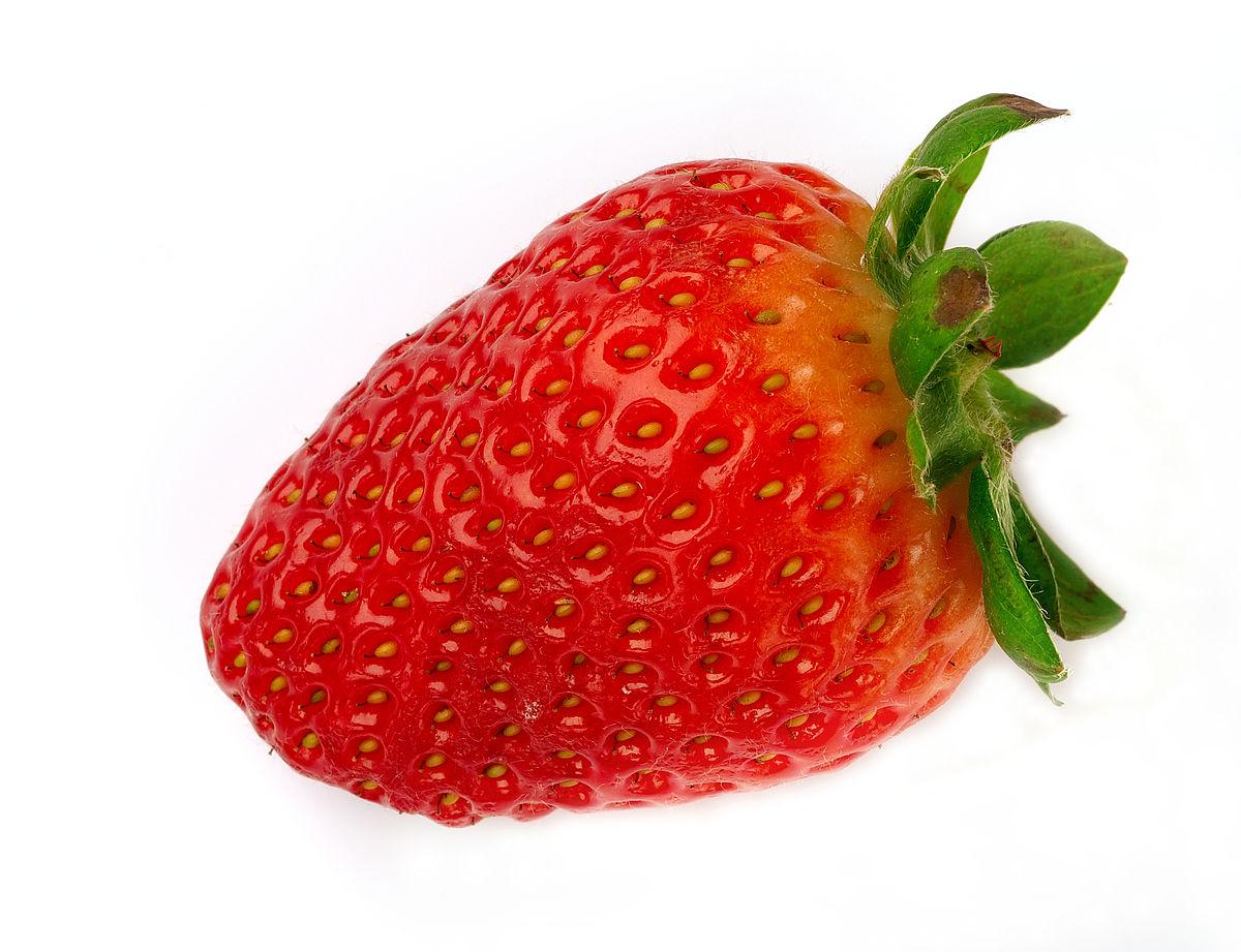 fraise — wikipédia