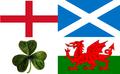Free Use British and Irish Lions flag.PNG