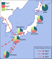 Frequencies of Y-DNA Haplogroup D and O in different Japanese population,.png