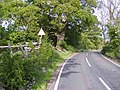 Frog warning - geograph.org.uk - 449124.jpg