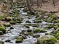 Górski strumień.jpg