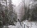 G. Zlatoust, Chelyabinskaya oblast', Russia - panoramio (43).jpg