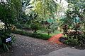 Garden - Agri-Horticultural Society of India - Alipore - Kolkata 2013-01-05 2213.JPG