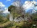 Garlies Castle, Minnigaff (2).jpg