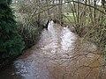 Garren Brook at Llangarron - geograph.org.uk - 678229.jpg