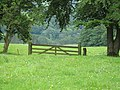Gate, Ada Hill - geograph.org.uk - 568030.jpg