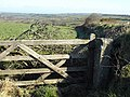 Gate beside the A395 - geograph.org.uk - 731882.jpg