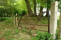 Gate near Minnowburn - geograph.org.uk - 803915.jpg