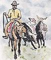 Gaucho,cattle.JW144.jpeg