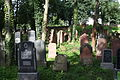 Gelnhausen Jüdischer Friedhof 21.JPG