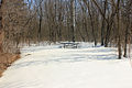 Gfp-minnesota-valley-picnic-place.jpg