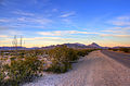 Gfp-texas-big-bend-national-park-roadside-dusk.jpg