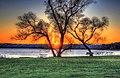 Gfp-wisconsin-madison-red-sun-behind-trees.jpg