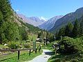 Giardino Botanico Alpino Paradisia abc4.JPG