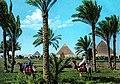 Giza1960s.jpg