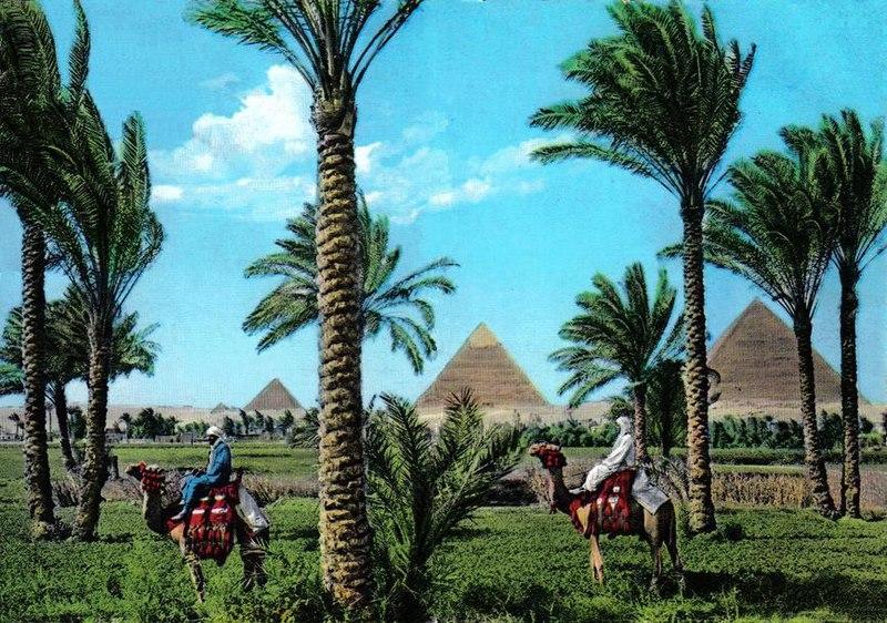 File:Giza1960s.jpg