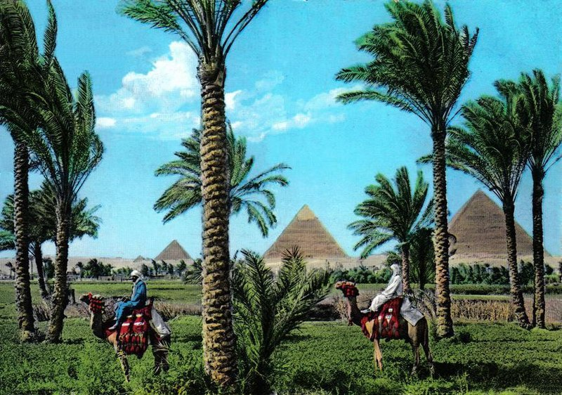 ���� ������� ������ ������ ������� 800px-Giza1960s.jpg