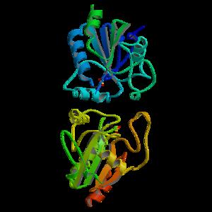 Glutathione peroxidase - Image: Glut Peroxidase 1GP1
