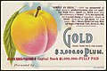 Gold $3,000.00 plum. (front) - 8962113356.jpg