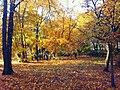 Gorczynski Park Poznan.jpg