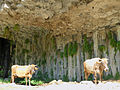 Gorge de Garni-Vaches (1).jpg