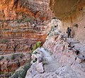 Grand Canyon National Park, North Kaibab Trail in Redwall 1017 - Flickr - Grand Canyon NPS.jpg