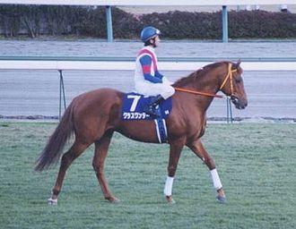 Keio Hai Spring Cup - The 1999 winner Grass Wonder