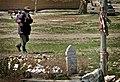 Graveyard Patrol (4269996594).jpg