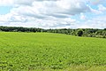 Green Pasture, Lodi Township, Michigan - panoramio.jpg