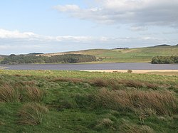 Greenlee Lough -