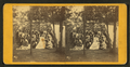 Group portrait at a camp in the woods, from Robert N. Dennis collection of stereoscopic views.png