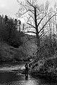 Gwinnett County, GA, USA - panoramio (4).jpg