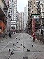 HK SYP 西環 Sai Ying Pun Market 正街 Centre Street 鴿子 pigeons near Third Street April 2020 SS2 03.jpg