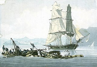 HMS <i>Speedy</i> (1782) Speedy-class brig of the British Royal Navy