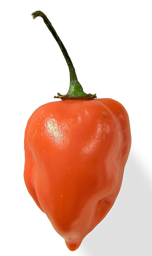 'Habanero closeup edit2' by Fir0002 at en.wikipedia [CC-BY-2.5 (http://creativecommons.org/licenses/by/2.5)], from Wikimedia Commons