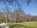 Hamm, Germany - panoramio (4348).jpg